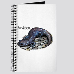 Blue-Spotted Salamander Journal