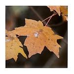 Orange Maple Leaf Tile Coaster