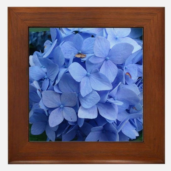 Cute Purple violets Framed Tile