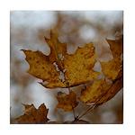 Brown Leaf Tile Coaster