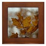 Brown Leaf Framed Tile