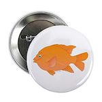 """Garibaldi Damselfish fish 2.25"""" Button"""