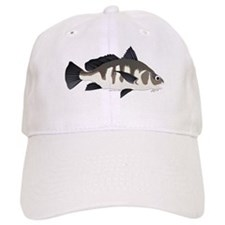 Black Drum c Baseball Cap