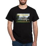 Political Stupidity Dark T-Shirt