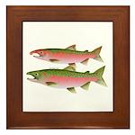 Pacific Coho Salmon fish couple Framed Tile