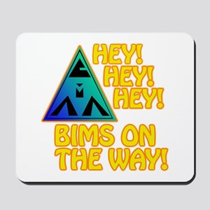 BIMS On The Way Mousepad