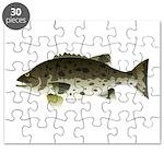 Giant Black Sea Bass fish Puzzle