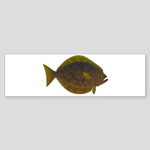 Halibut fish Bumper Sticker
