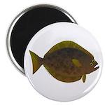 Halibut fish Magnet