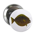 Halibut fish 2.25