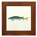 White Sturgeon fish Framed Tile