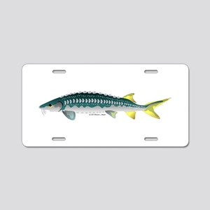 White Sturgeon fish Aluminum License Plate