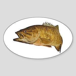 Smallmouth Bass Art Affect Sticker