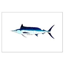 Shortbill Spearfish f Posters