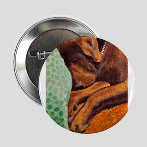"""Brown Dog 2.25"""" Button"""