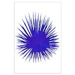 Purple Sea Urchin Posters