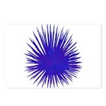 Purple Sea Urchin Postcards (Package of 8)