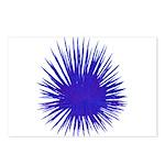 Purple Sea Urchin Postcards (Package of 8)