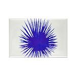 Purple Sea Urchin Rectangle Magnet (100 pack)