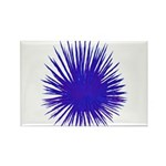 Purple Sea Urchin Rectangle Magnet (10 pack)