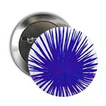 Purple Sea Urchin 2.25