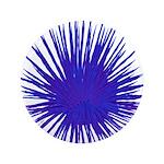 Purple Sea Urchin 3.5