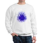 Purple Sea Urchin Sweatshirt