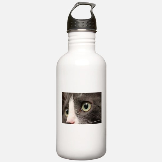 Close Up Shot Of A Hunting Cat's Eyes Water Bottle