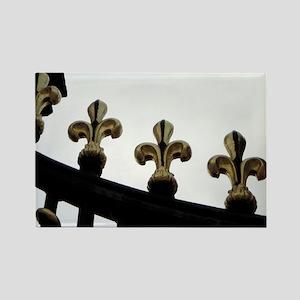 Paris in Spring Rectangle Magnet (10 pack)