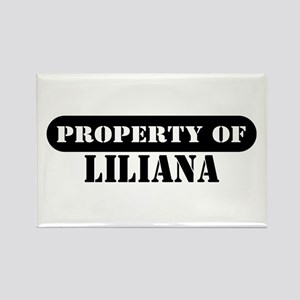 Property of Liliana Rectangle Magnet