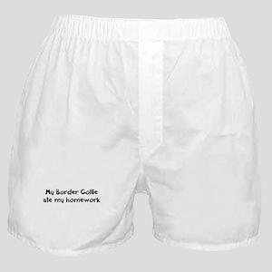 Border Collie ate my homework Boxer Shorts
