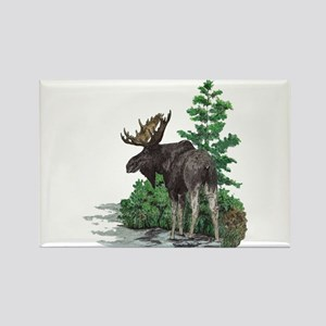 Bull moose art Rectangle Magnet
