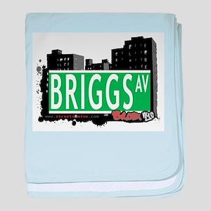 Briggs Ave baby blanket