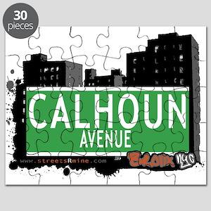 Calhoun Ave Puzzle