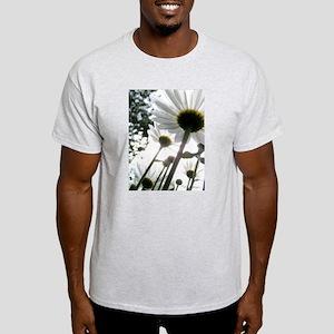 Winter Park Daisies T-Shirt