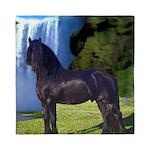 Hidden Horse Canyon Queen Duvet