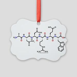 Andrew molecularshirts.com Ornament