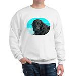 Black Lab image on Sweatshirt