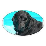 Black Lab image on Oval Sticker