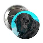Black Lab image on Button