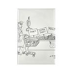 Produce Cartoon 4342 Rectangle Magnet (10 pack)