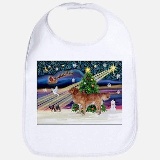 XmasStar/Nova Scotia dog Bib