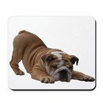 BULLDOG SMILES Mousepad