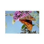 Beautiful Butterfly Print Rectangle Magnet (100 p
