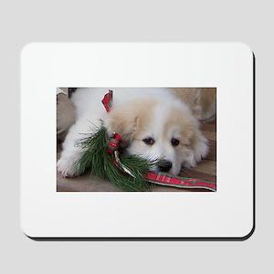 Pyr Pup -- Mousepad