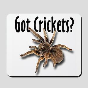 Tarantula Got Crickets Mousepad