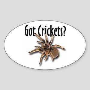 Tarantula Got Crickets Oval Sticker