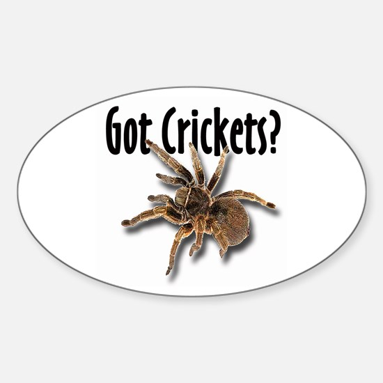 Tarantula Got Crickets Oval Decal