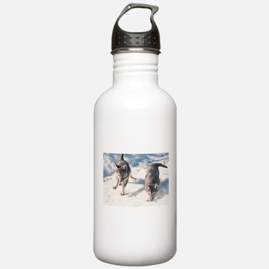 """Two Cubs"" Water Bottle"