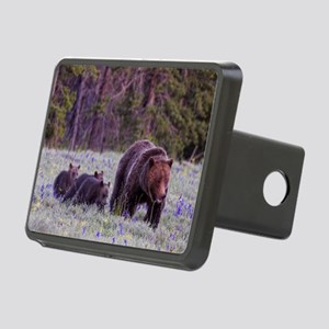 Grizzly Bear 399 Hitch Cover